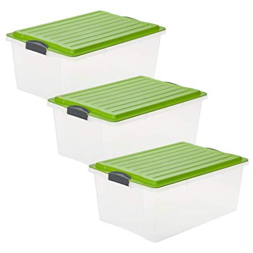 Rotho Compact 3er-Set Aufbewahrungsbox 38l mit Deckel, Kunststoff (PP) BPA-frei, transparent/grün, 3 x A3/38l (57,0 x 40,0 x 25,0 cm)