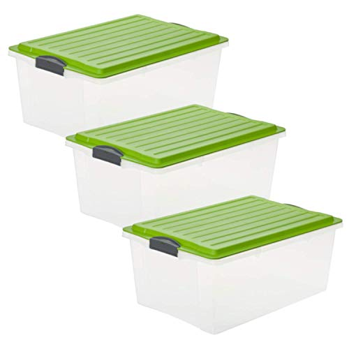 Rotho Compact 3er-Set Aufbewahrungsbox 38l mit Deckel, Kunststoff, Transparent/Grün, 38 Liter / A3 (57 x 40 x 25 cm)