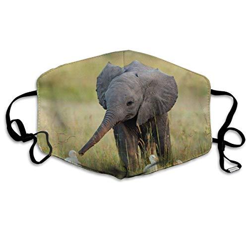 Mundabdeckung Niedliche Elefanten Bedruckte Staubgesichtsabdeckung für Frauen und Männer