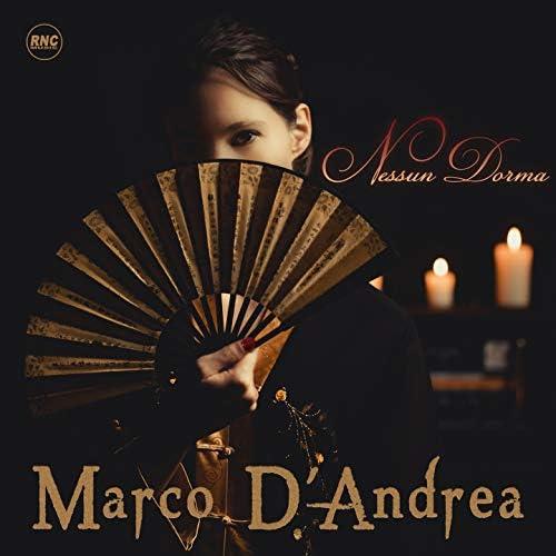 Marco D'Andrea