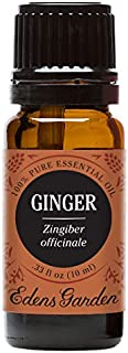 Edens Garden Ginger Essential Oil, 100% Pure Therapeutic Grade (Digestion & Inflammation) 10 ml