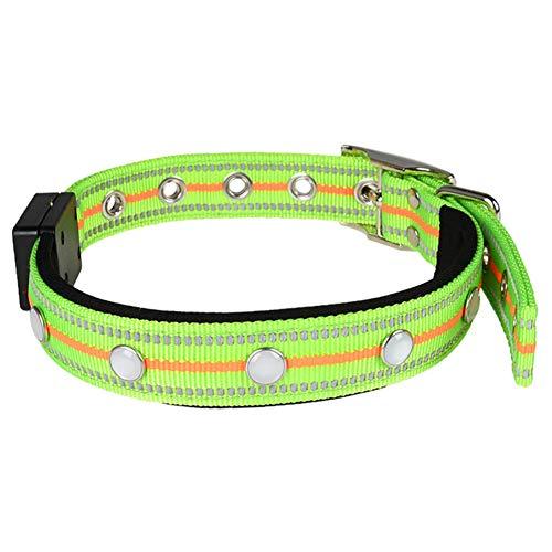 Collar para Perros Tira Reflectante Impermeable Multifuncional Recargable Collar Luminoso Collar para Cachorros Collar para Perros Collar para Perros Led Collar para Perros M,Green