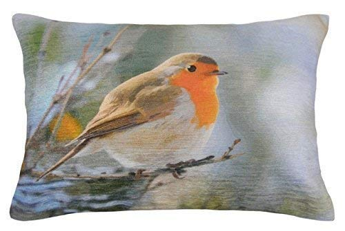 EVANS LICHFIELD RED ROBIN COTTON MADE IN THE UK FILLED CUSHION 17' X 13' - 33 X 43CM