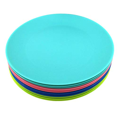 Plastic Plates Reusable BPA-free Dishwasher and Microwave Safe Colorful Set of 12 for Parties Wedding Indoor or Outdoor Use