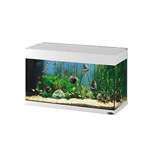 Ferplast 65034011 Aquarium, afmetingen: 81 x 36 x 51 cm, 125 L, wit