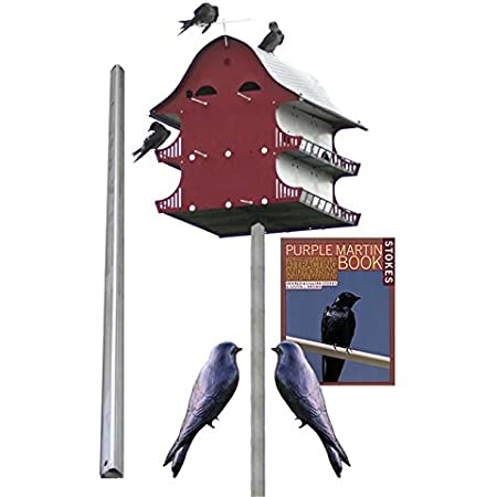 Amazon Com Bestnest S K 16 Room Purple Martin House Package Garden Outdoor