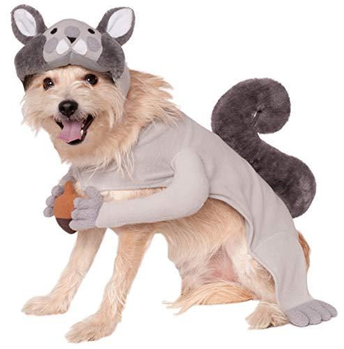 Rubie's Squirrel Pet Costume, X-Large, Multicolor