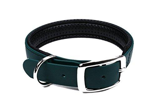 LENNIE BioThane Halsband, gepolstert, Dornschnalle, 25 mm breit, Größe 44-52 cm, Dunkelgrün, Aufdruck möglich