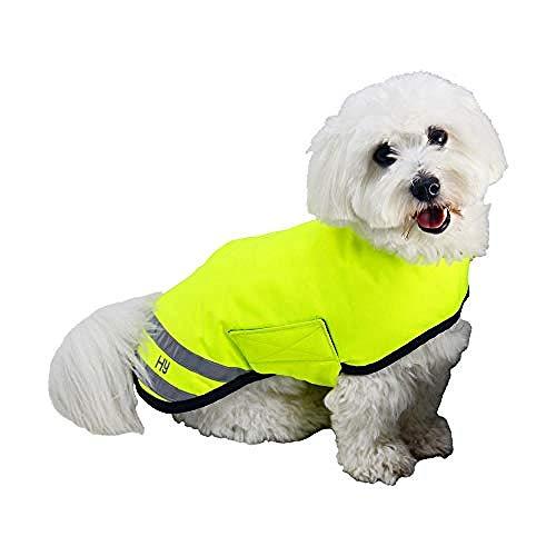 Hyviz Cappotto per cani impermeabile e riflettente (S) (Giallo)