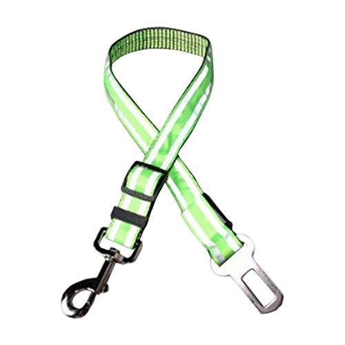 SinceY Soft halsband Comfy Pet hondenhalsband, verdikkend intrekbaar reflecterend trektouw met LED verlichte hondenriem, huisdiertrekkoord 3 kleuren instelbare halsbanden voor honden, groen