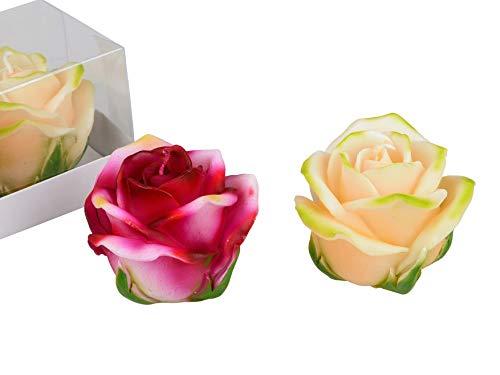 Lifestyle & More Wunderschöner Windlichtsatz Kerzen in Form von Rosen beige und rosa im 2er Pack Höhe 7 cm
