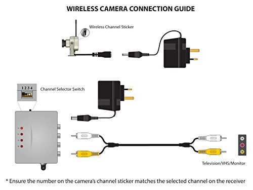 Wifi enabled bird box cameras
