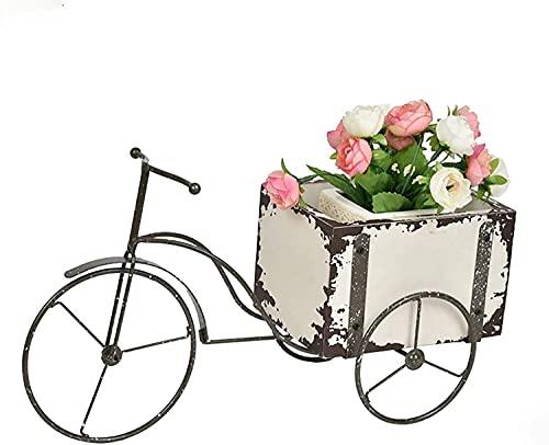 Qjkmgd Pote de Cactus suculento, Caja de Triciclo Cuadrado macetas rústicas macetas en Forma de Bicicleta Adornos de Escritorio para el hogar de la decoración del jardín