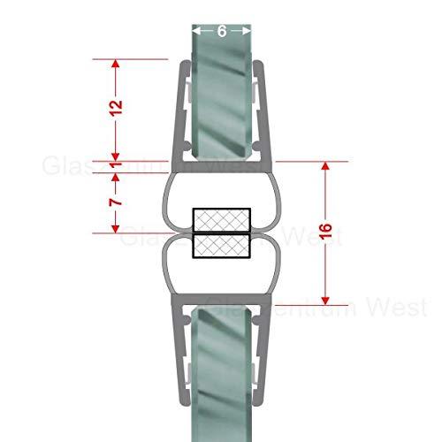 Magnetdichtungen 180° Magnetprofil Steckprofil Duschdichtung Glasdusche 1 Set für Glasstärke 4-6 mm 7,49€/m