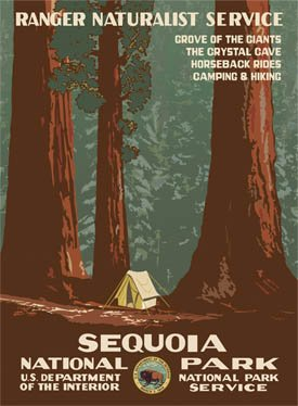 Ford Sequoia National Park Poster