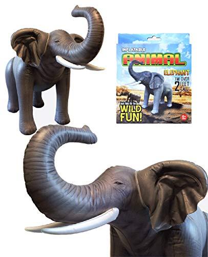 Agorà - Elefante