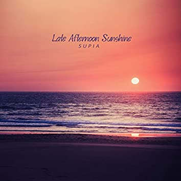 Late Afternoon Sunshine