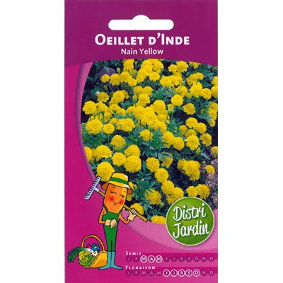 Graines d'oeillet d'inde nain yellow 1g