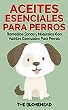 Aceites esenciales para perros:  Remedios sanos y naturales