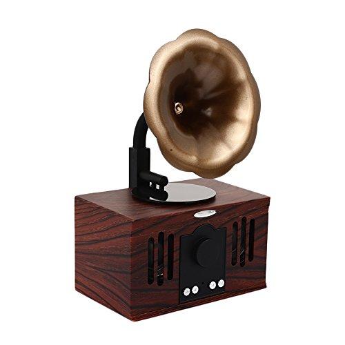 haihuic Retro Vintage Classic Bluetooth Speaker con Doppio Altoparlante Stereo, Giradischi fonografo grammofono Lettore di Registrazione MP3