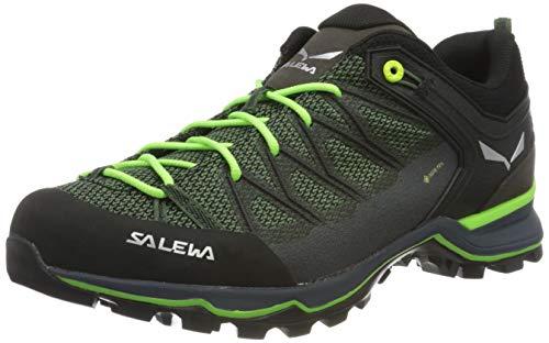 Salewa Herren MS Mountain Trainer Lite Gore-TEX Trekking-& Wanderstiefel, Myrtle/Ombre Blue, 42.5 EU