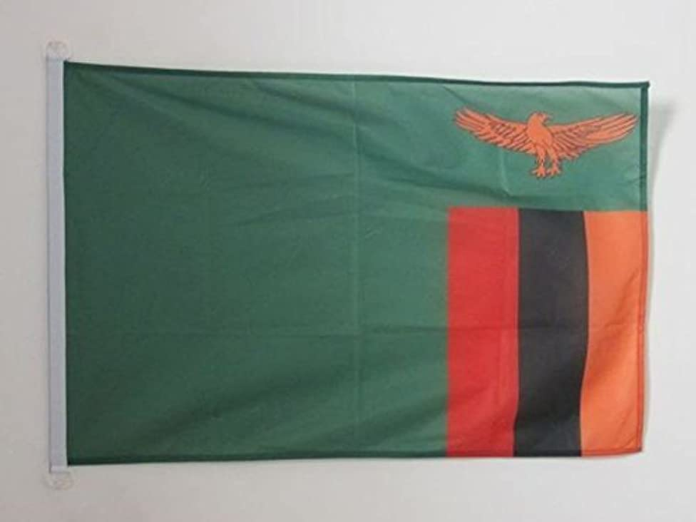 AZ FLAG Zambia Flag 2' x 3' for Outdoor - Zambian Flags 90 x 60 cm - Banner 2x3 ft Knitted Polyester with Rings