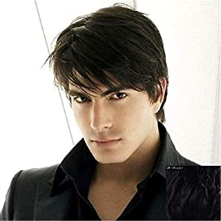 Men's Black Wig Short Layered Fashion Straight Cosplay Synthetic Hair Wig for Men (Black)