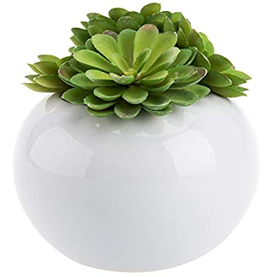 Decorative Modern Potted Green Artificial Succulent Plants w/ Glazed Ceramic Flower Pot - MyGift®