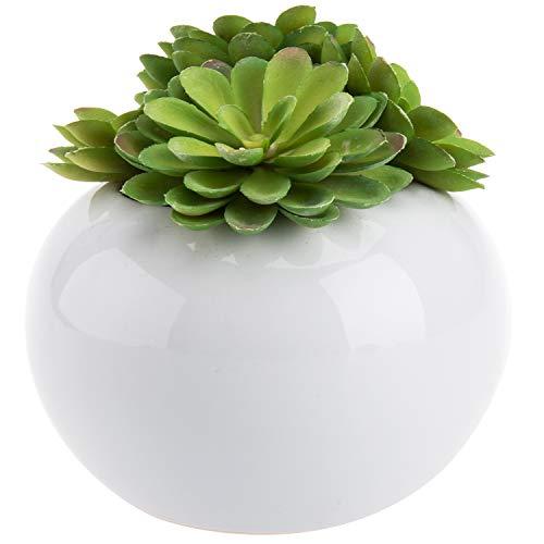 F Fityle Lot de 10 Bougeoir Mini Succulent Pot Pots De Fleurs en Bois Jardin D/écoration