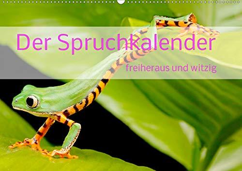 Der Spruchkalender - freiheraus und witzig (Wandkalender 2021 DIN A2 quer)