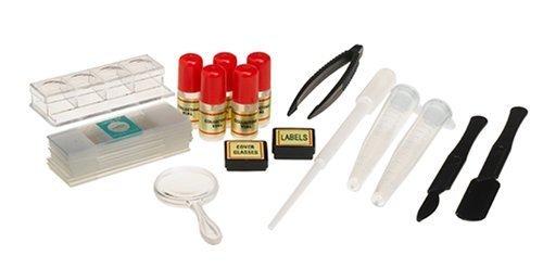 Edu Science Quick-Switch Microscope - 300x - 600x - 900x by Toys R Us