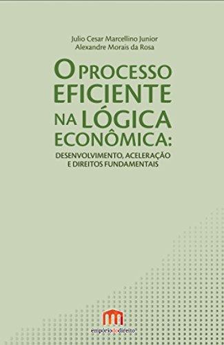 O Processo Eficiente na Lógica Econômica: Desenvolvimento, Aceleração e Direitos Fundamentais