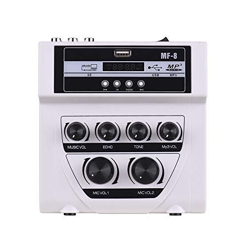 Accueil Mixer extérieur Karaoke Double entrée Microphone Amplificateur Microphone avec Bluetooth Enregistrement Effet de réverbération Support de Carte USB/SD