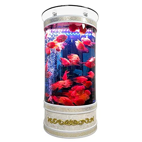 DUTUI Zylindrisches Aquarium Aquarium, Gebogenes Wohnzimmer Wohnzimmer Dekoration Aquarium, Bodenfilterung, Kein Wasserwechsel Auf Dem Boden,60cm
