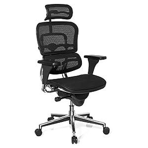 hjh OFFICE 652984 silla de oficina ERGOHUMAN BASE tejido de malla negro, alta calidad, amplios ajustes, sólido aluminio pulido, ergonómico, sillón alta gama