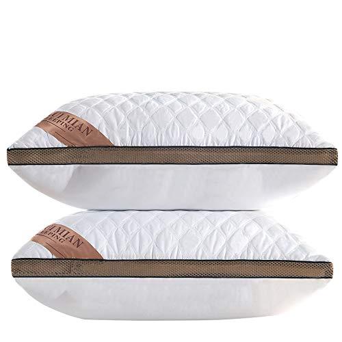 HEXIN Almohadas de Plumas de Calidad, Almohadas de plumón no alergénicas y antiácaros del Polvo, Paquete de 2, Almohadas usadas para Dormir de Lado y de Espalda (Blancas, 74x48cm)