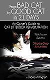 Cat Litterboxes Bewertung und Vergleich