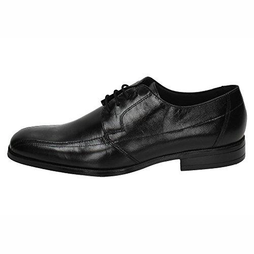 MADE IN SPAIN 2631 Zapatos BAERCHI Piel Hombre Zapatos CORDÓN