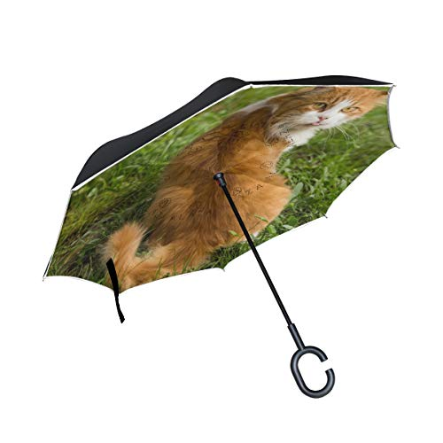 Affordable PNGLLD Animal Cat Green Grass Inverted Umbrella Double Layer Reverse Folding Umbrella wit...