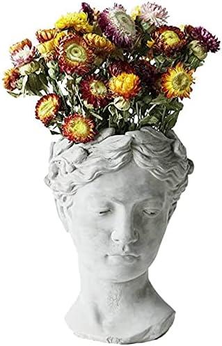 wasd Popular brand Greek 1 year warranty Sculpture Resin Succulents Sta Pot Flower Head Female