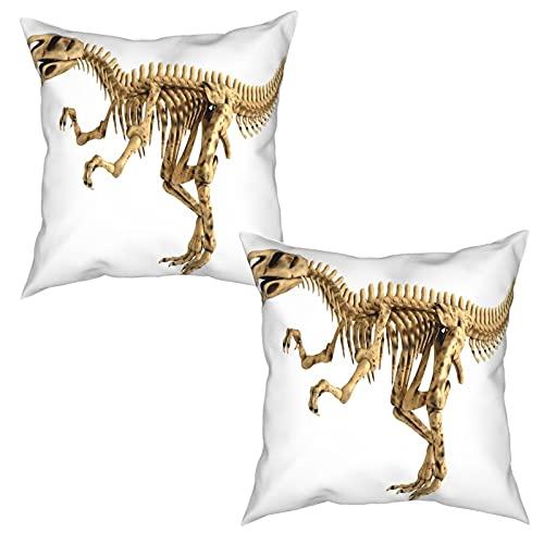 Paquete de 2 Fundas de Cojín Fundas de Almohada,Fossil Dino Skeleton Bones Imagen Realista Dangerous,cuadradas Cojín Liso Decoración para el hogar Decoraciones para sofá Sofá Cama Silla (50x50cm) x2