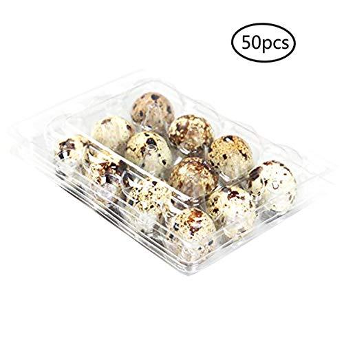 Cajas De Huevos De Codorniz - Bandeja De Huevos Apilable Con Tapa, Caja De Almacenamiento Organizador De Contenedor De Huevos PVC Plástico Para El Hogar De La Cocina