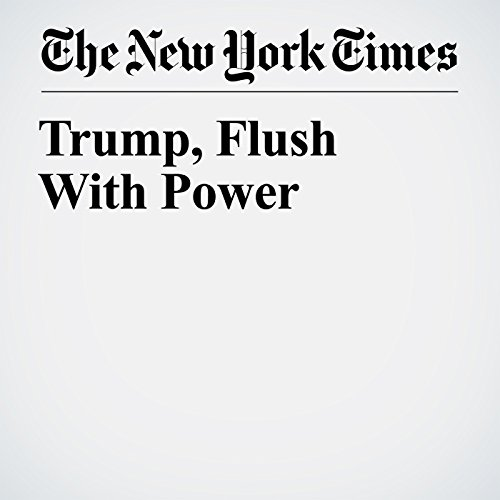Trump, Flush With Power copertina