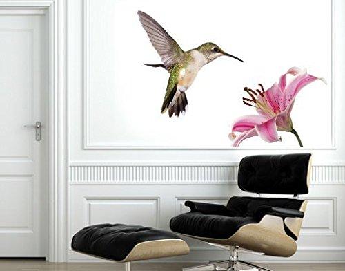 Klebefieber Wandsticker Kolibri B x H: 50cm x 35cm