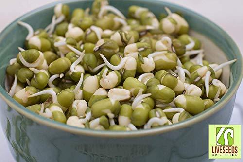SANHOC Paquet Graines:: Liveseeds - Graines germées Mung B - // () Seed