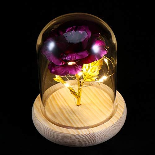 Luminária de Flores Encantadas Mobestech com Cordão de Luz de LED Rosa em redoma de vidro A Bela e a Fera Preserved Galáxia Presente de Casamento Rosa Roxo