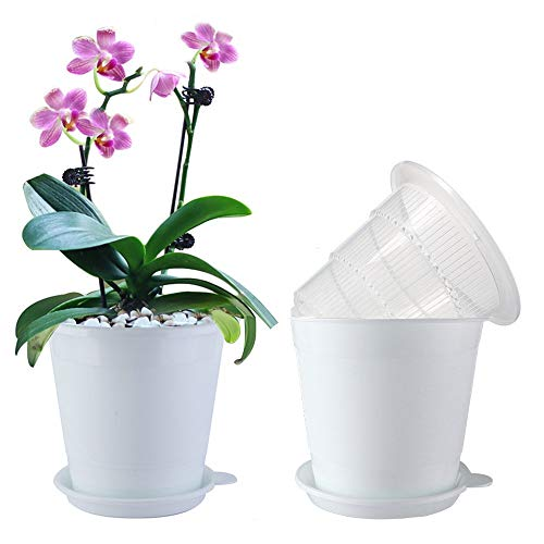 Meshpot 4 Inches Clear Plastic Orchid Pots with Holes Succulent Planter Pot Catus Pot - 4 Inner Pot,4 Outer Pot,4 Saucer