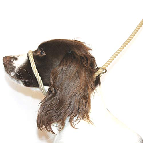 Dog & Field Figure 8 Anti Pull Leash/Halter/Head Collar- One Size Fits All - Super Soft Braided Nylon - Fitting Instructions Included -Comfortable, Kind, Supple, Secure No More Pulling! (Natural)
