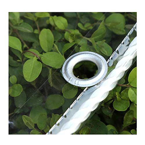 Cubierta vegetal transparente lona impermeable de plástico de PVC Lona con ojales, Sheet Covers de flores de plantas a prueba de lluvia, de espesor 0,3 mm 450 g / m² ( Color : Clear , Size : 1.4x3m )