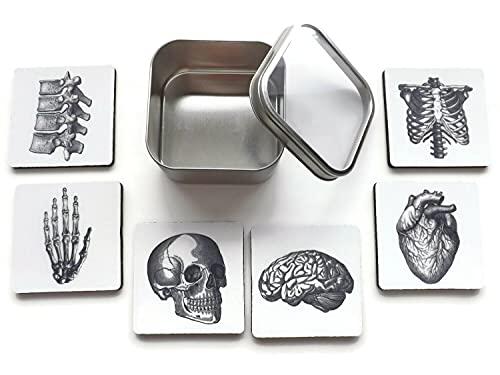 Human Anatomy Coaster Set